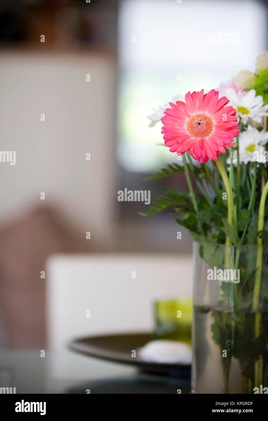 Blumenvase mit Gerbera im Wohnraum - flower vase with gerbera in living room Stock Photo