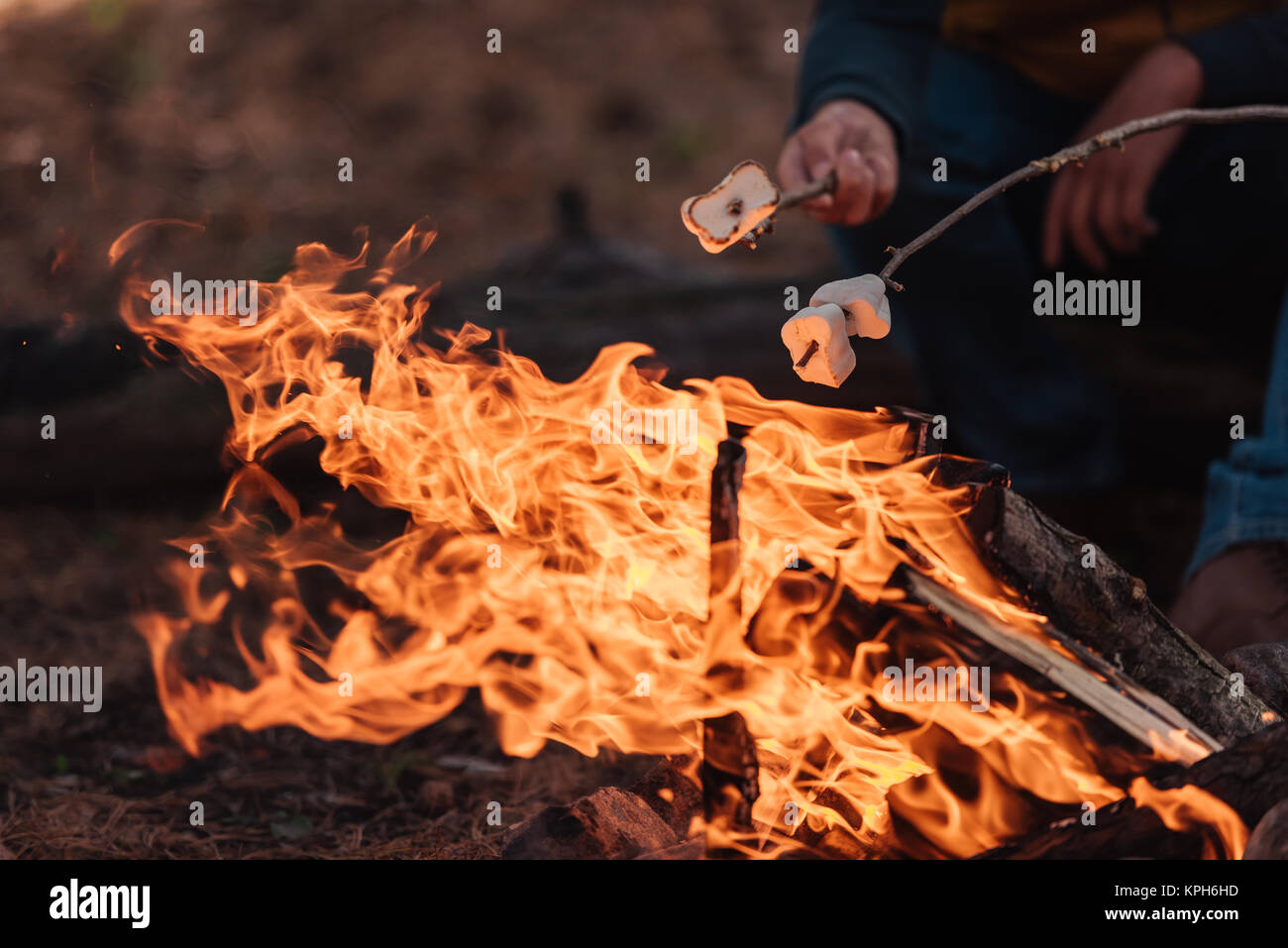 cooking marshmallows on bonfire - Stock Image