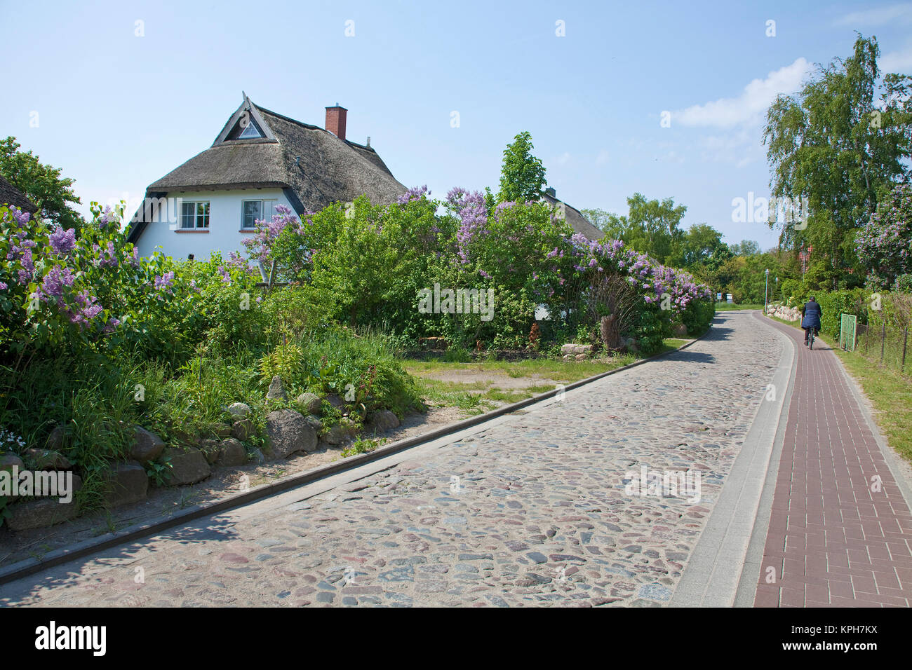 Thatched-roof house at the main street of Gross Zicker, Ruegen island, Mecklenburg-Western Pomerania, Baltic Sea, - Stock Image