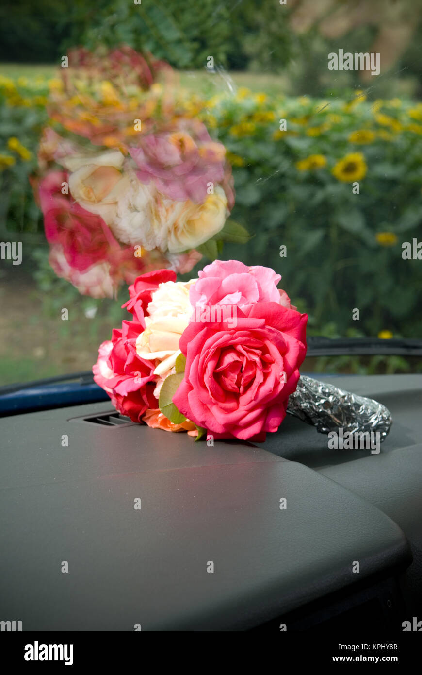 photo of a small bouquet of roses wrapped in tinfoil on the dashboard of a car with a sunflower field in background - Stock Image