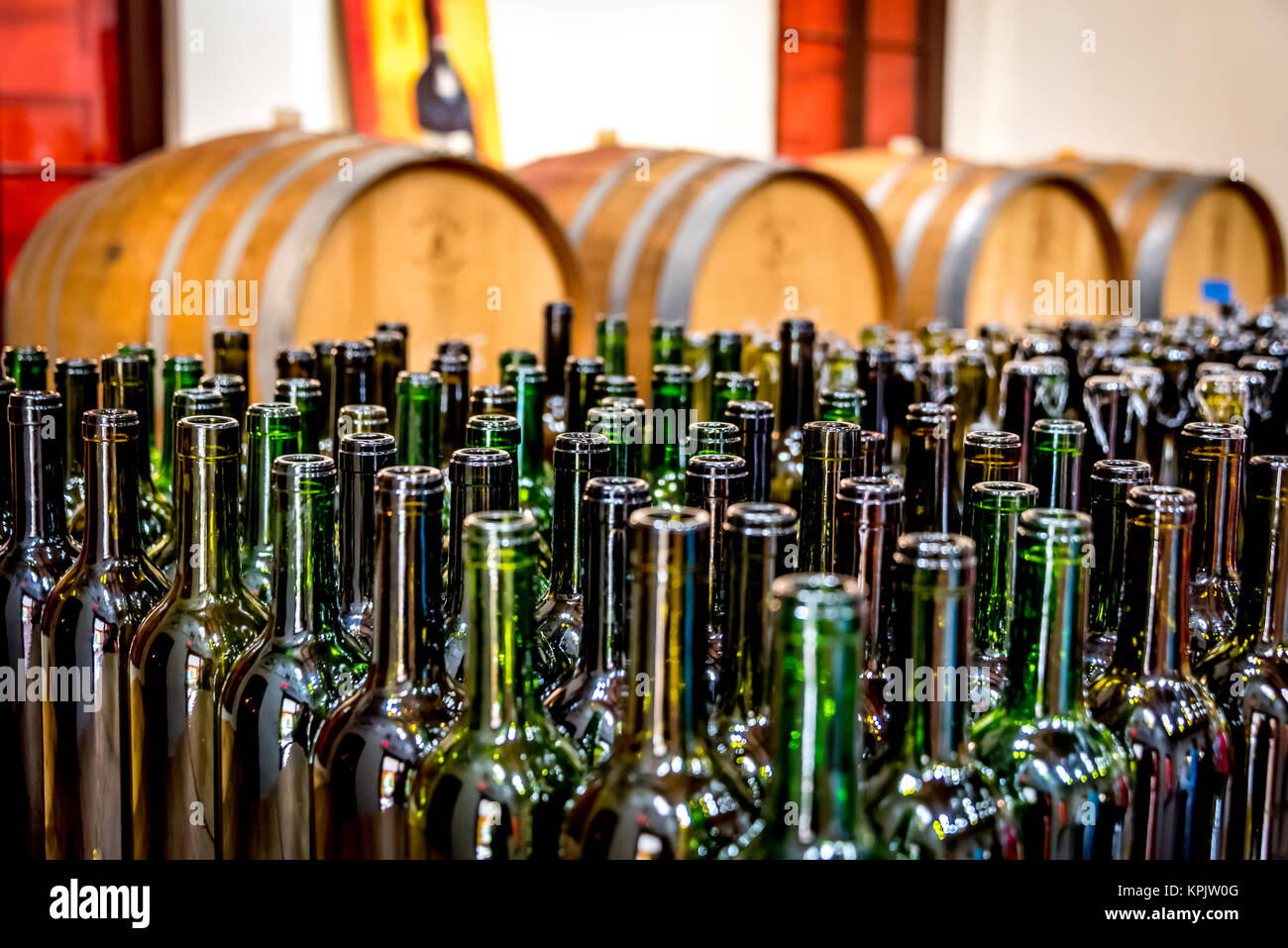 Rows of green wine bottles in front of wine barrels at Bahama Barrels winery in Nassau, Bahamas. - Stock Image