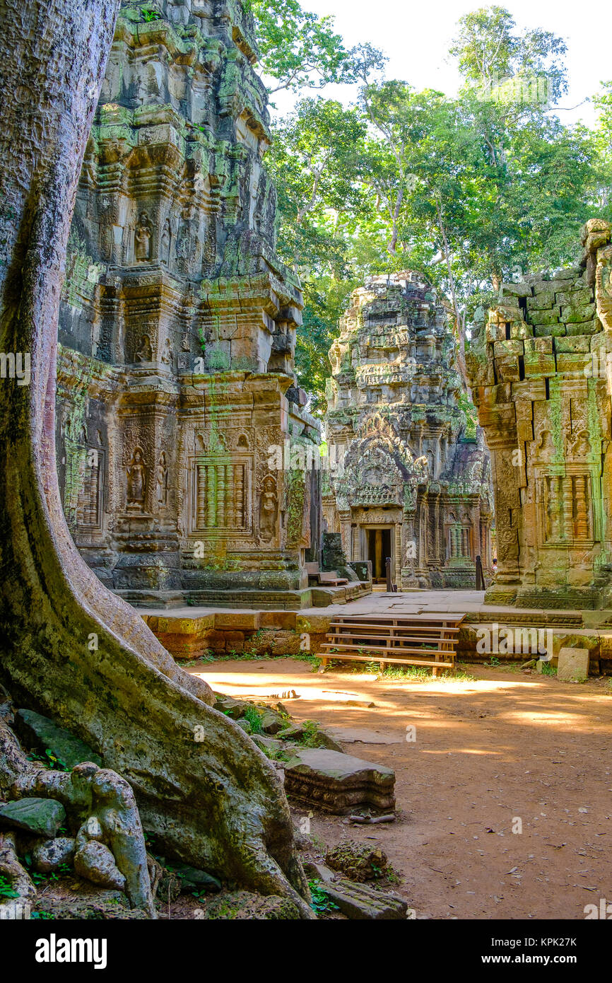The beautiful ruins of the temples at Ta Prohm - Stock Image