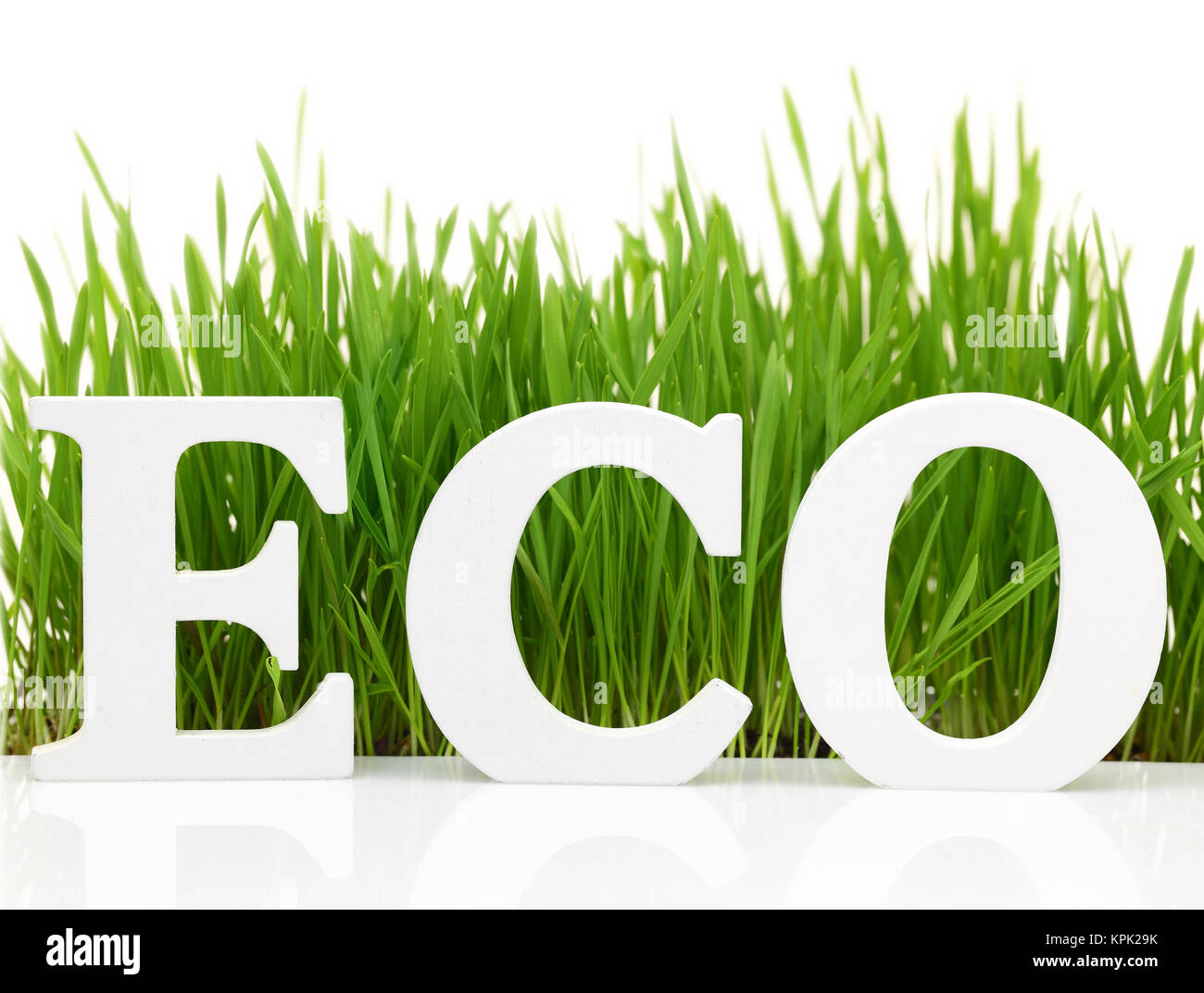 Word 'Eco' with fresh grass isolated on white - Stock Image