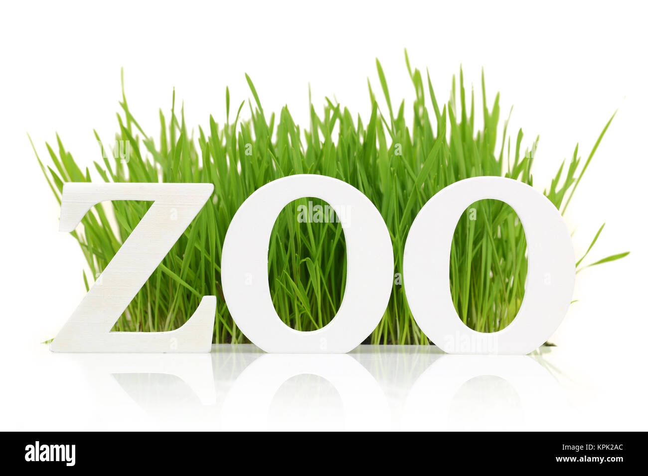 Word 'Zoo' with fresh grass isolated on white - Stock Image