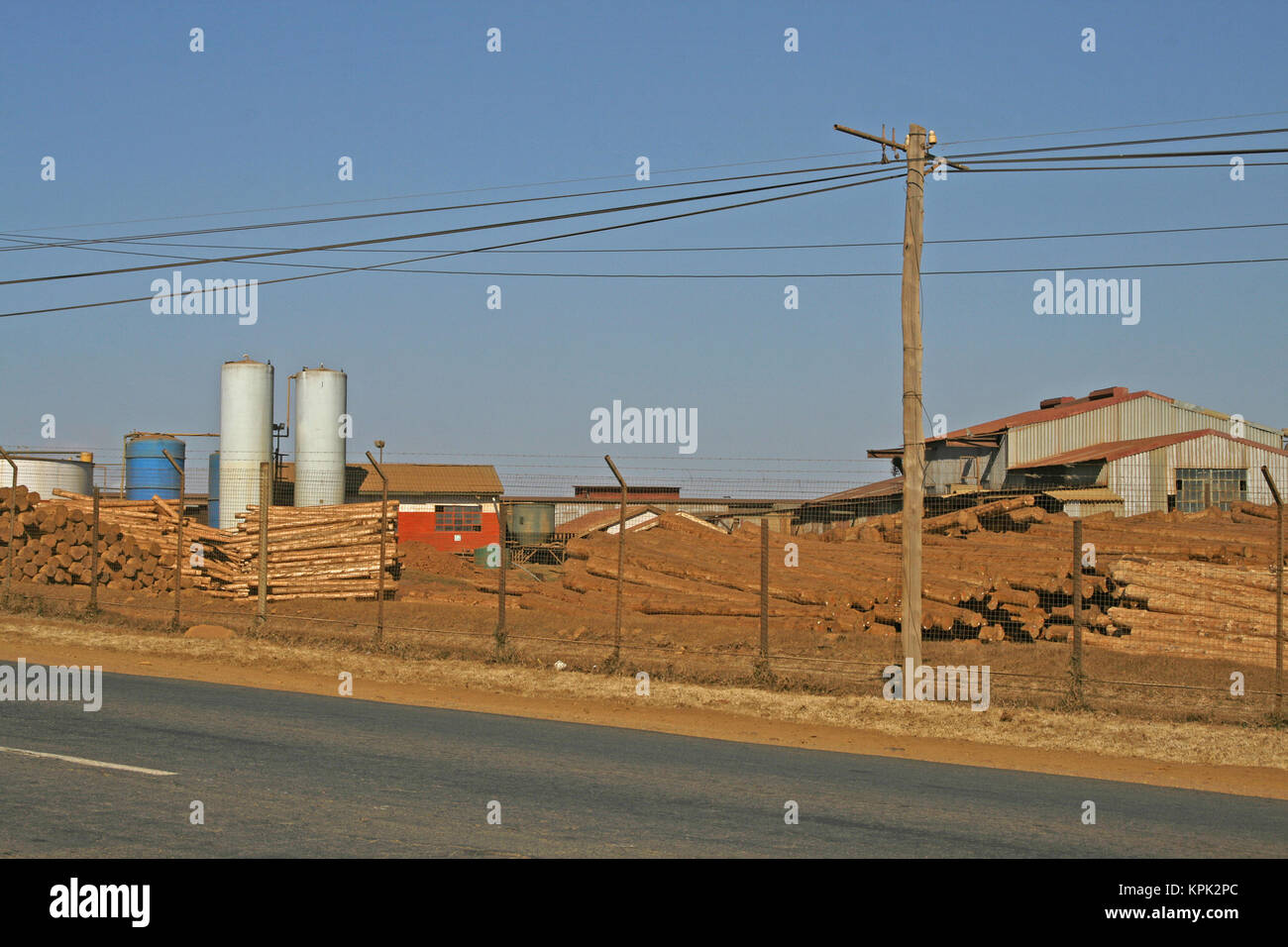 Timber at timber factory, Kingdom of Swaziland. - Stock Image