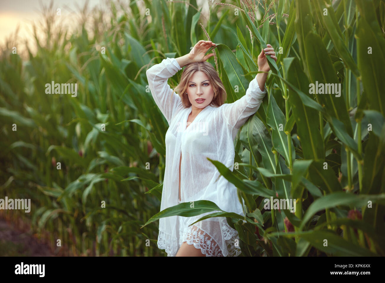 Woman among the tall grass in nature. Stock Photo