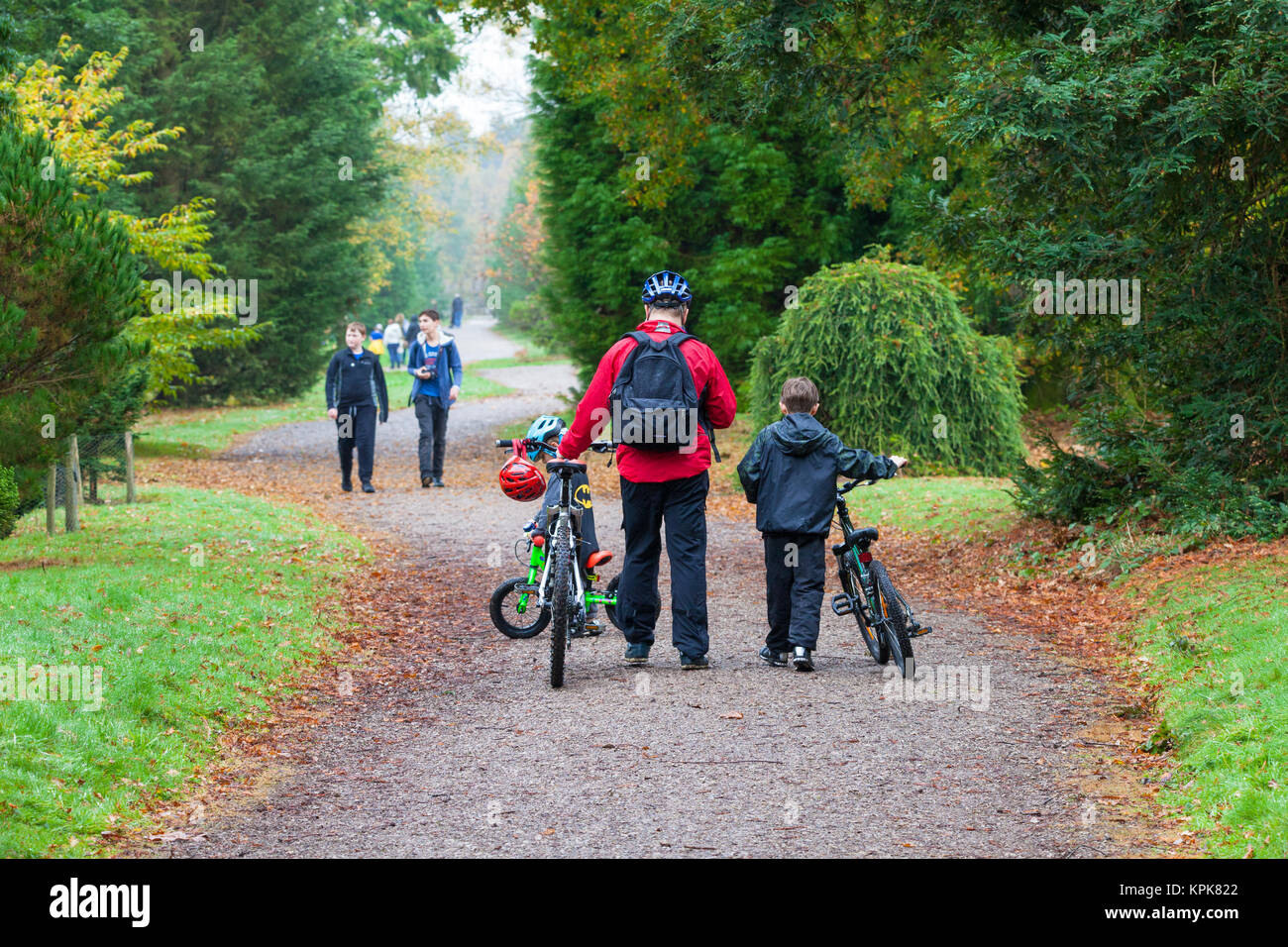 Bedgebury National Pinetum at Bedgebury, Kent. A family with bikes walk along a trail path - Stock Image