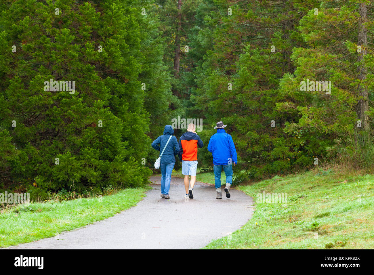 A group of walkers at the Bedgebury National Pinetum at Bedgebury, Kent - Stock Image
