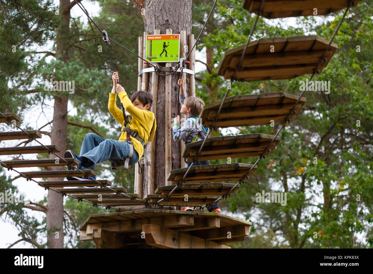 Two boys rope and bridge climbing at the Bedgebury National Pinetum at Bedgebury, Kent - Stock Image