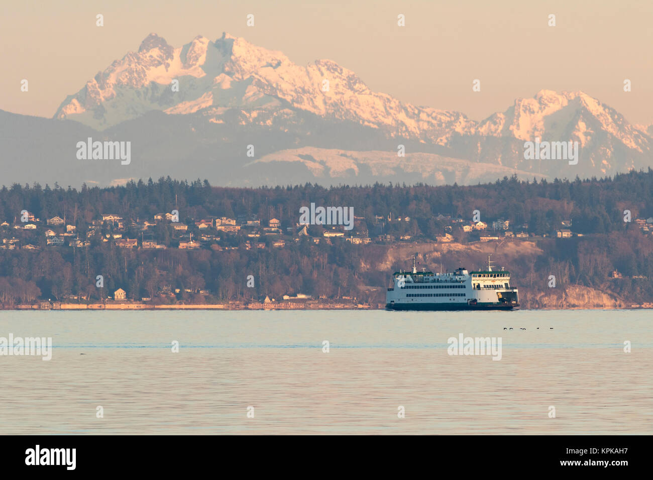 Washington State Ferry and sunset colors on Cascade Mountains and Whidbey Island. - Stock Image