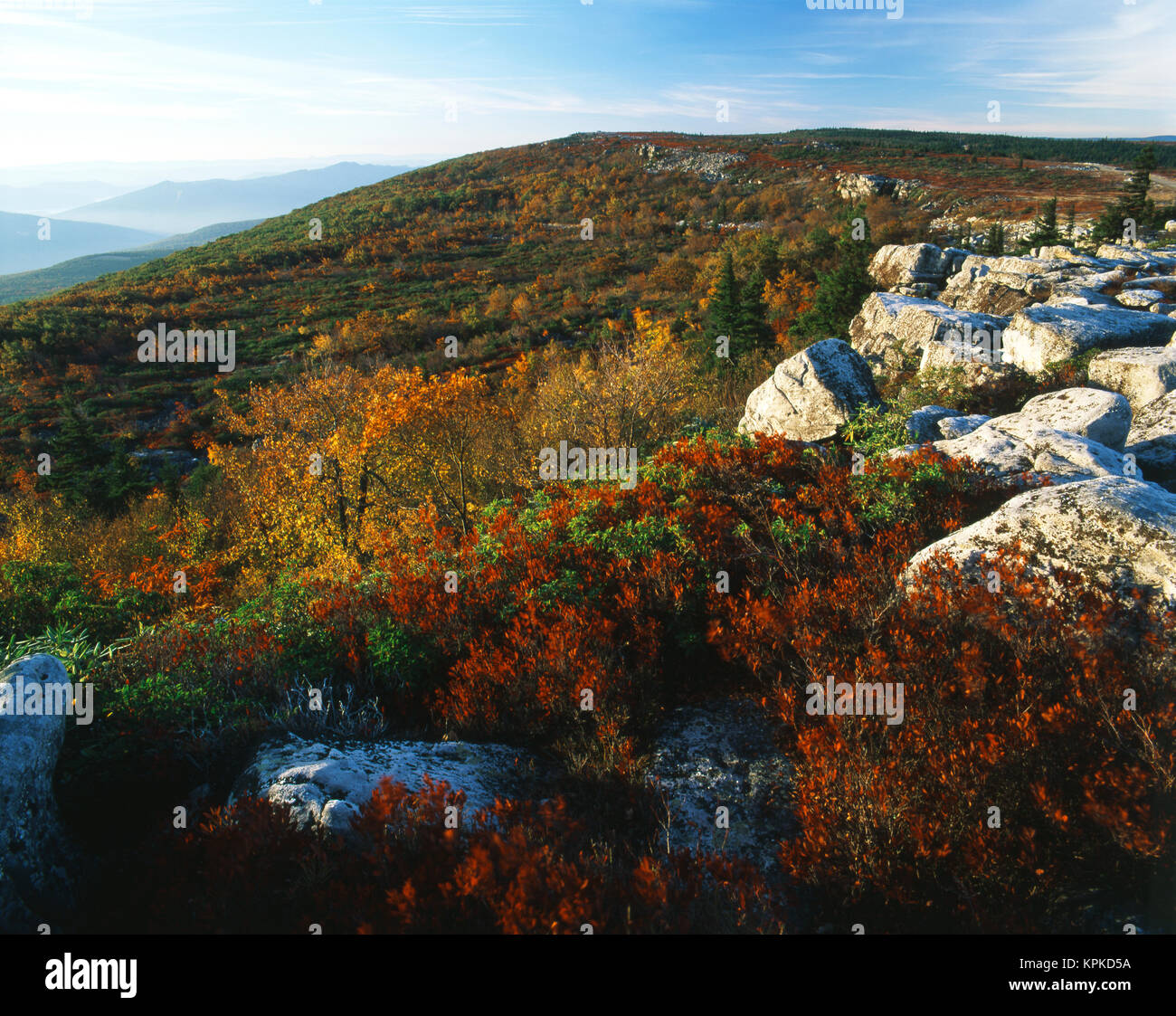 USA, West Virginia, Monongahela National Forest, Bear Rocks in Dolly Sods Wilderness Area (Large format sizes available) - Stock Image