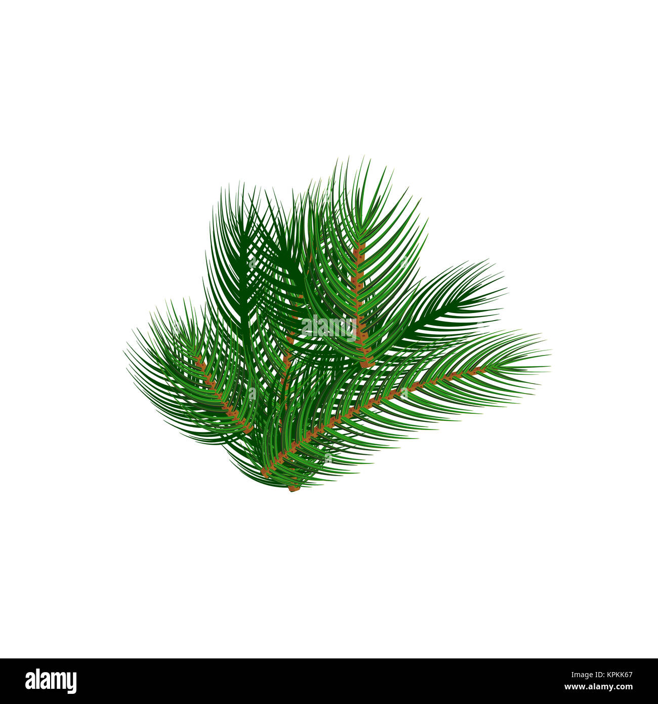 Spruce Branch as an Element of New Year's Decor. Green Fir Twig Isolated on White Background. - Stock Image