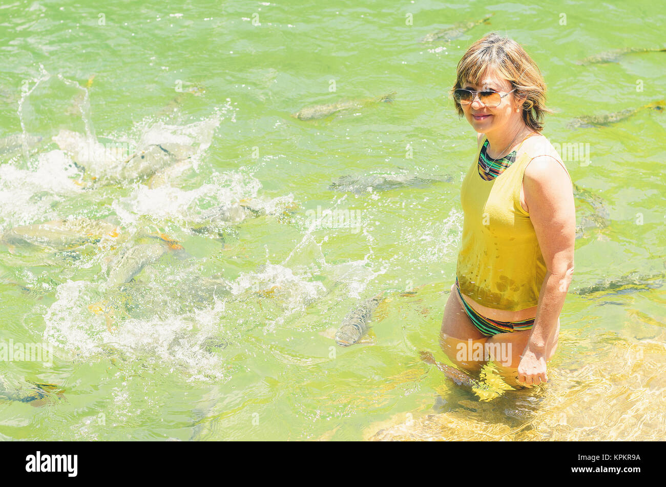 Woman tourist on the waters of the river Formoso with some piraputanga fishes swimming around her on the transparent - Stock Image