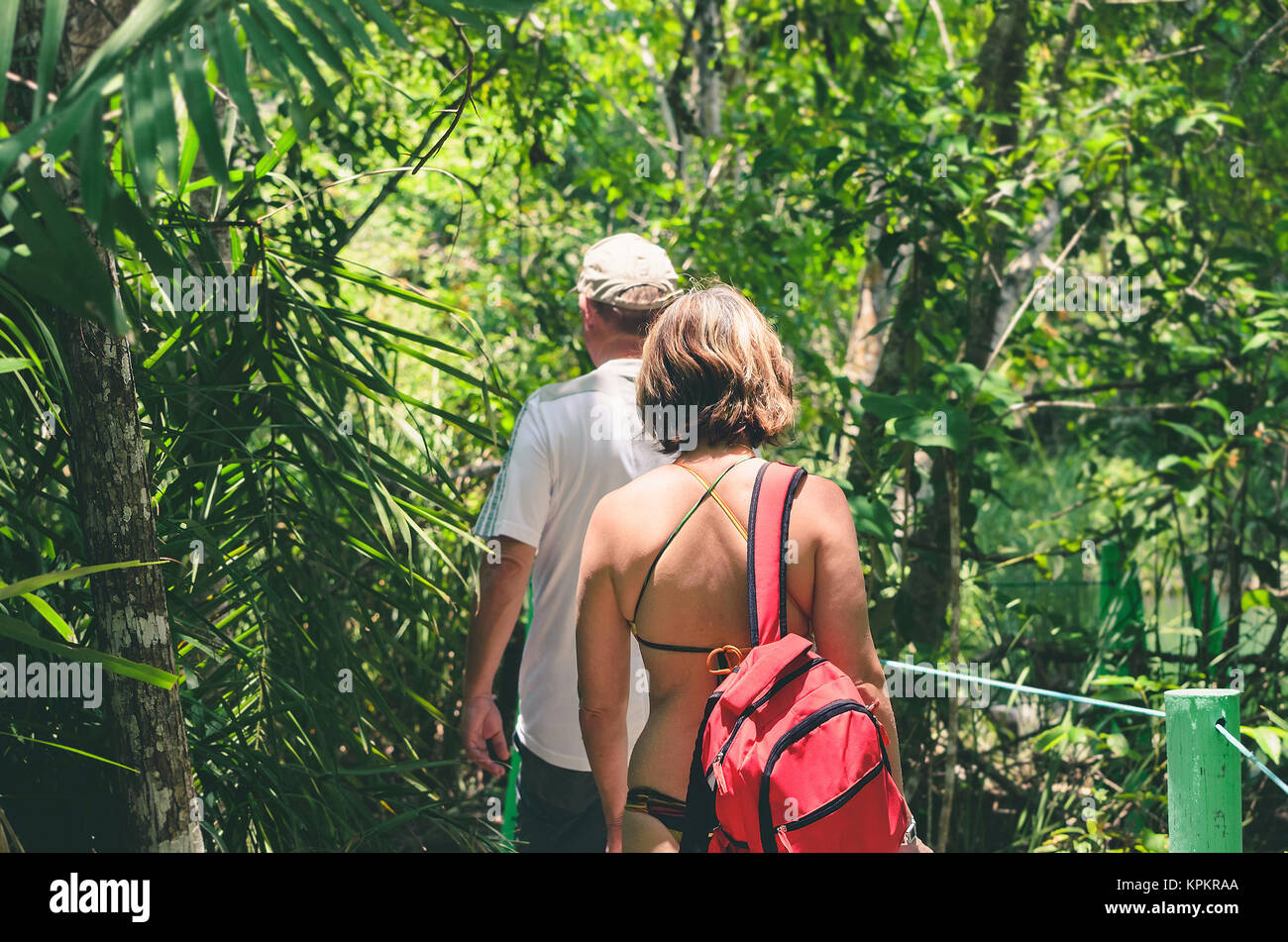 Tourists on a eco tour walking through a trail on the forest. Trail surrounded by nature on Bonito - MS, Brazil. - Stock Image