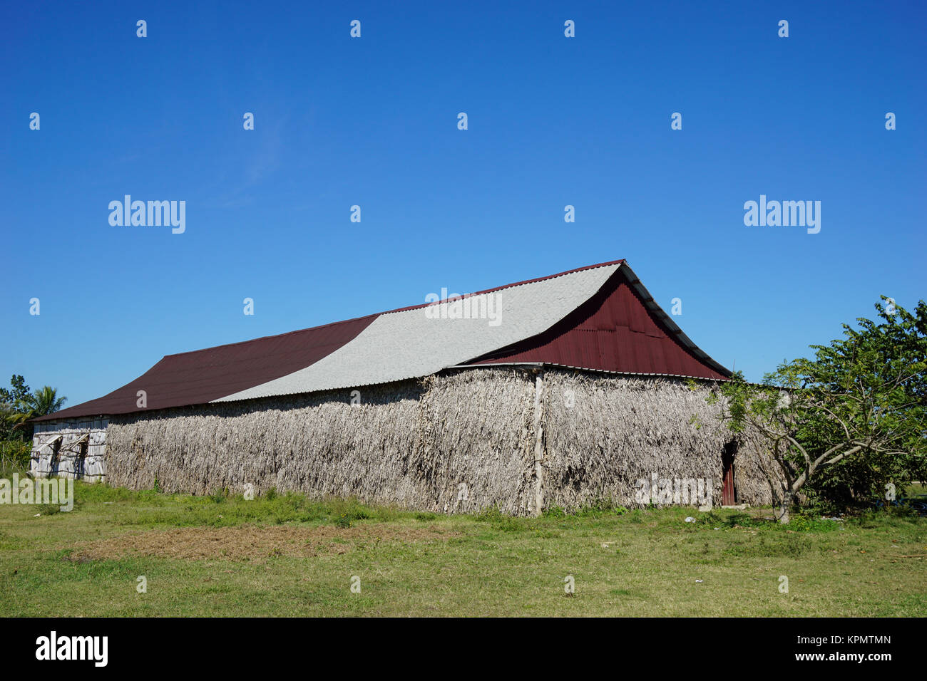 Tropical Agriculture Building - Stock Image