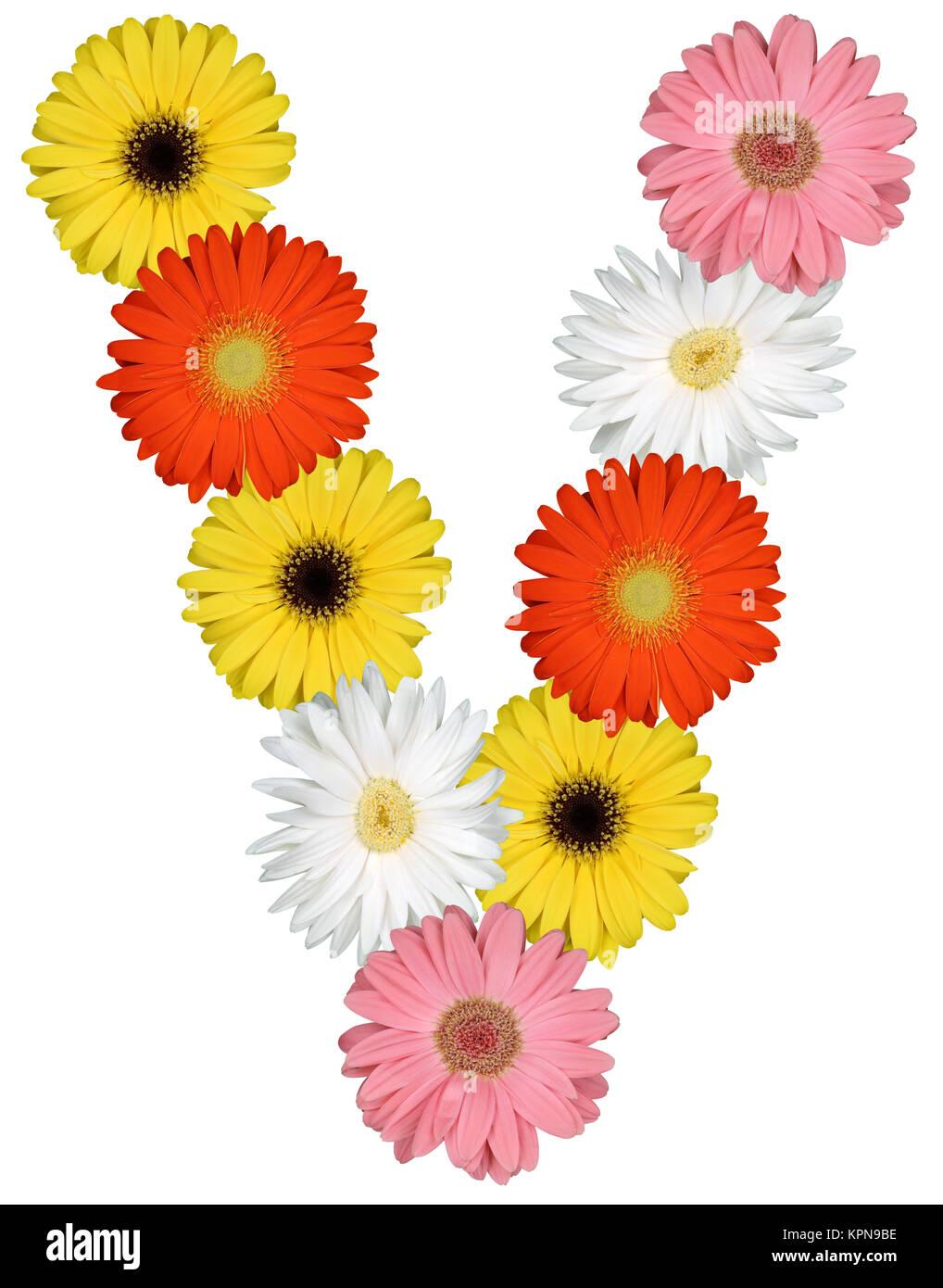 Letter v plant stock photos letter v plant stock images alamy letter v alphabet of flowers cut on white stock image thecheapjerseys Gallery