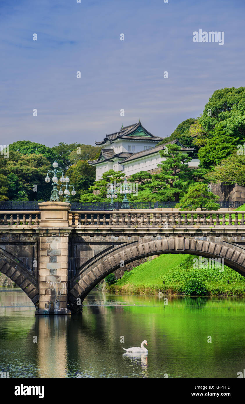 Tokyo Imperial Palace Outer Gardens with the famous Nijubashi Bridge and a swan - Stock Image