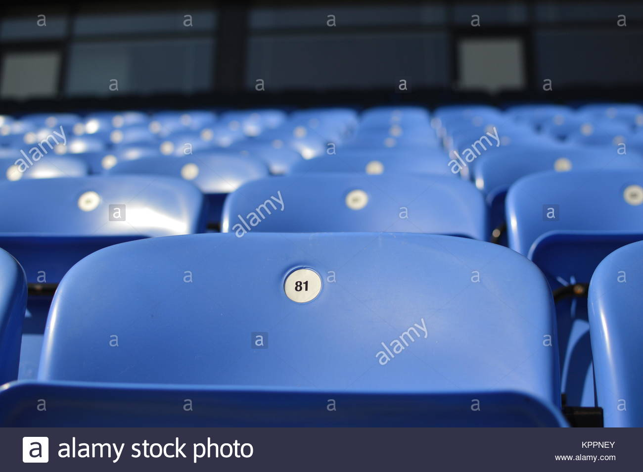 Numbered blue seats in sports stadium - Stock Image