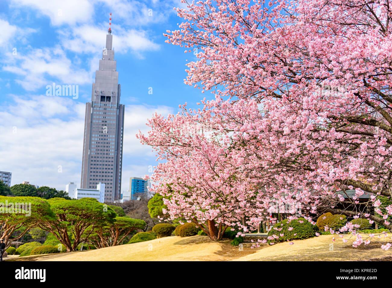 Tokyo, Japan Spring - Stock Image