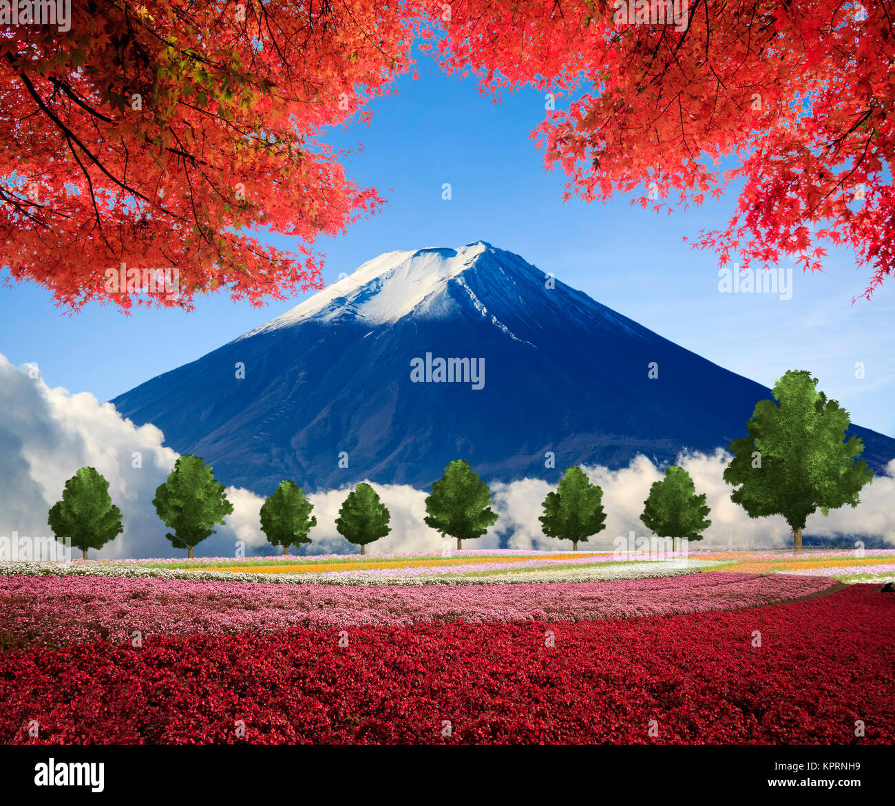 Imaging Of Beautiful Landscape With Nice Nature Color Stock Photo Alamy