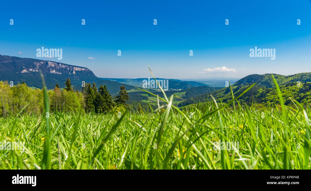 panoramic view in summer - Stock Image