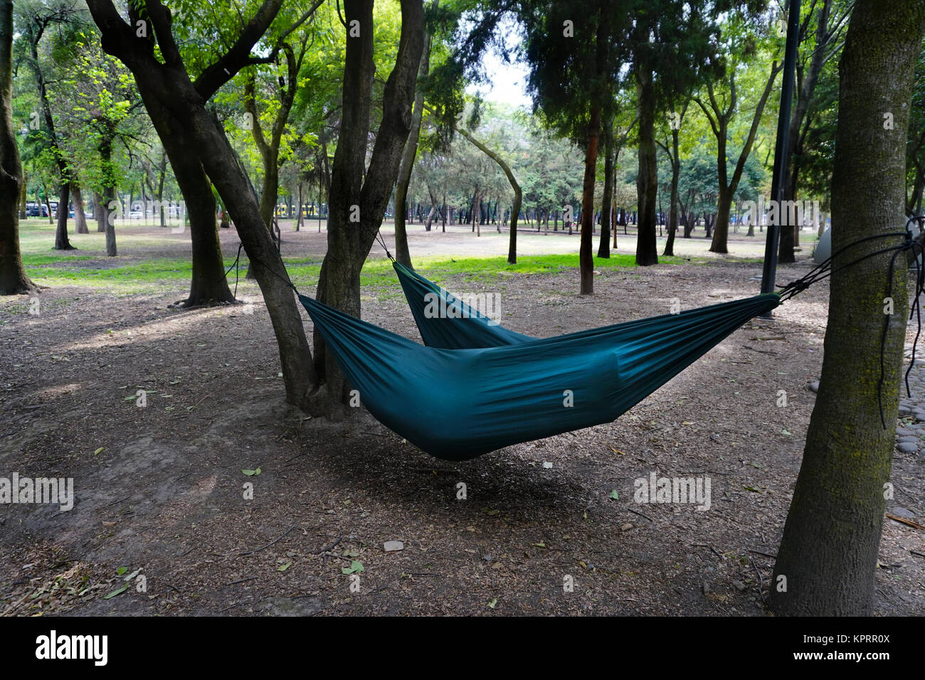 People in hammocks, Chapultepec Park, Mexico City, DF, Mexico, - Stock Image