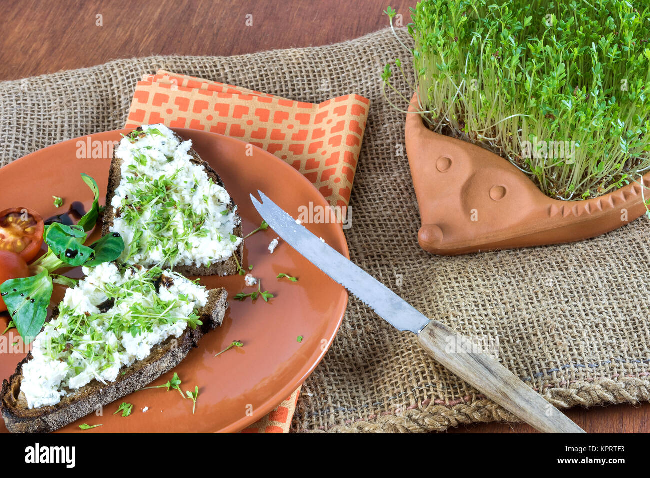 even retraction garden cress as healthy vitamin supplier - Stock Image
