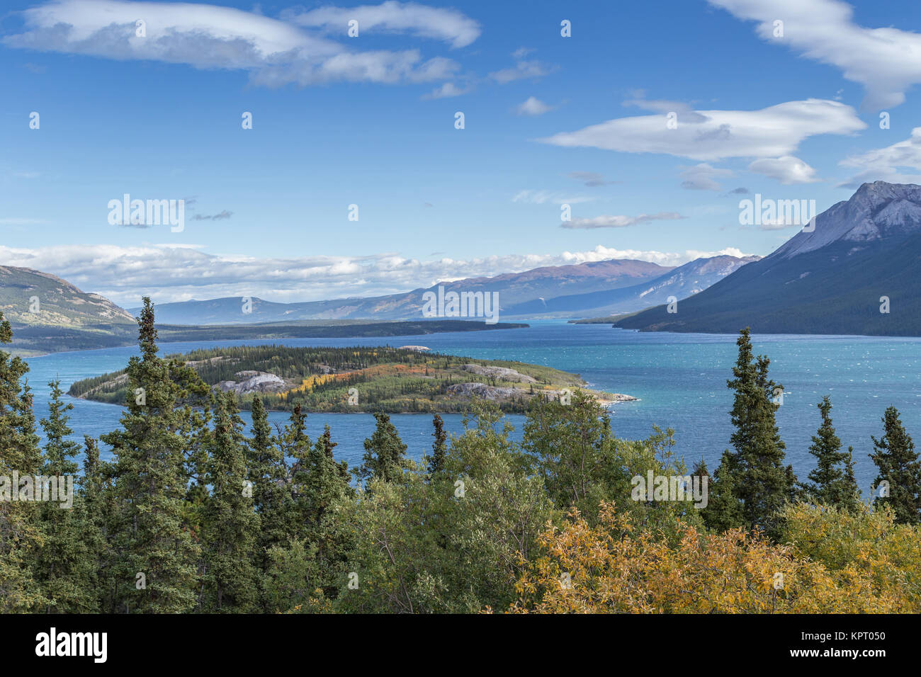 Bove Island in Tagish lake is near Carcross, Southern Lakes, Yukon Territories, Canada famously part of the route - Stock Image