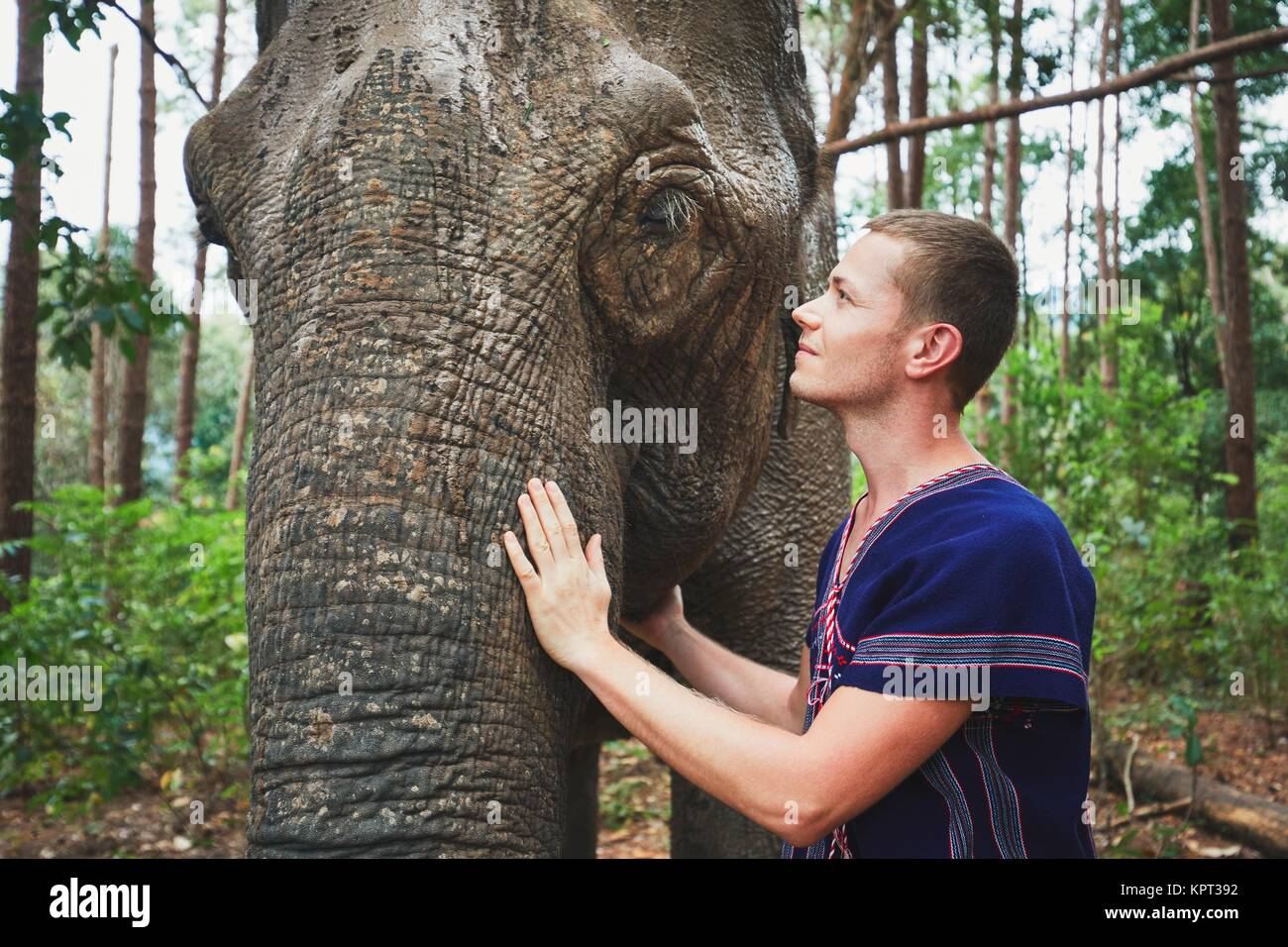 Face to face. Young traveler with friendly elephant in tropical rainforest in Chiang Mai Province, Thailand. - Stock Image