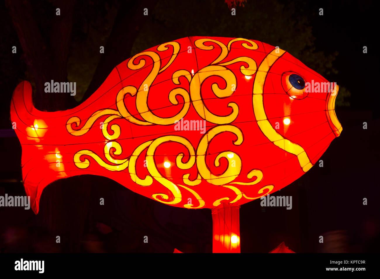 fish lantern stock photos fish lantern stock images alamy. Black Bedroom Furniture Sets. Home Design Ideas