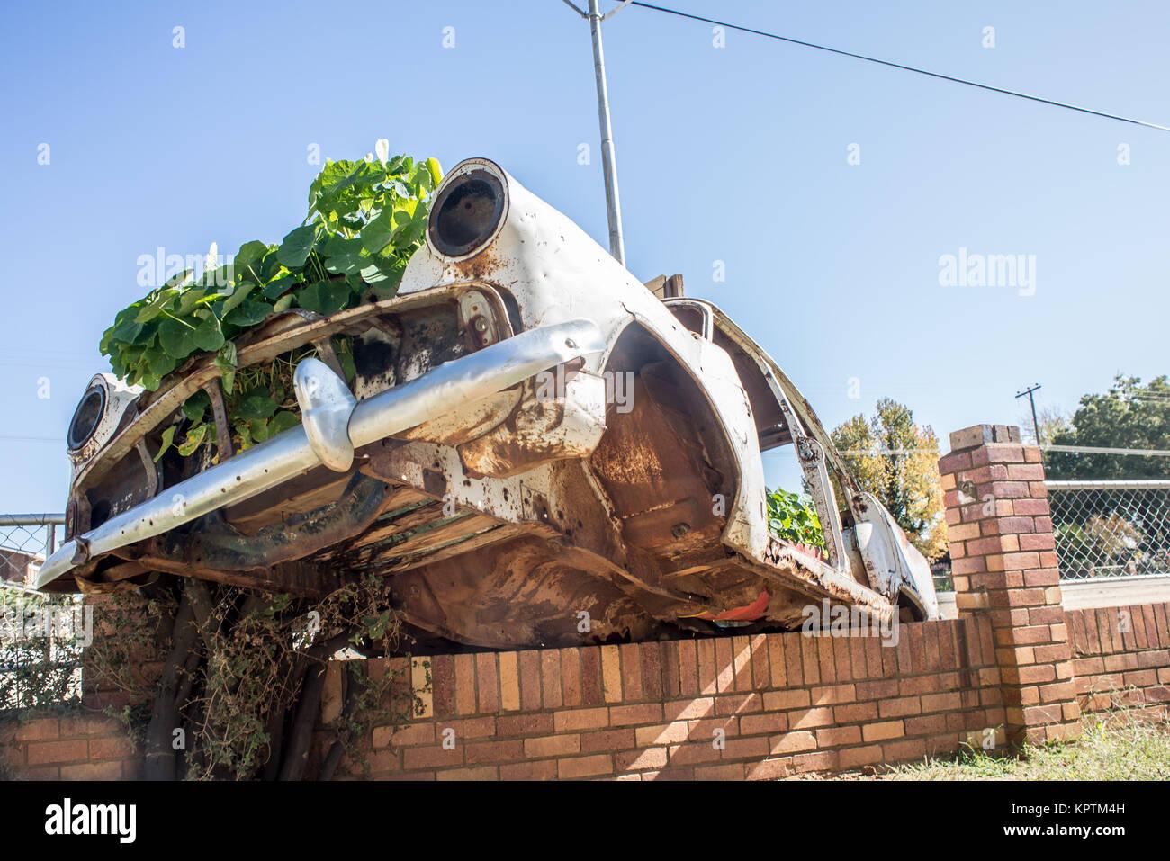 Car Wreck as Garden on Wall Stock Photo