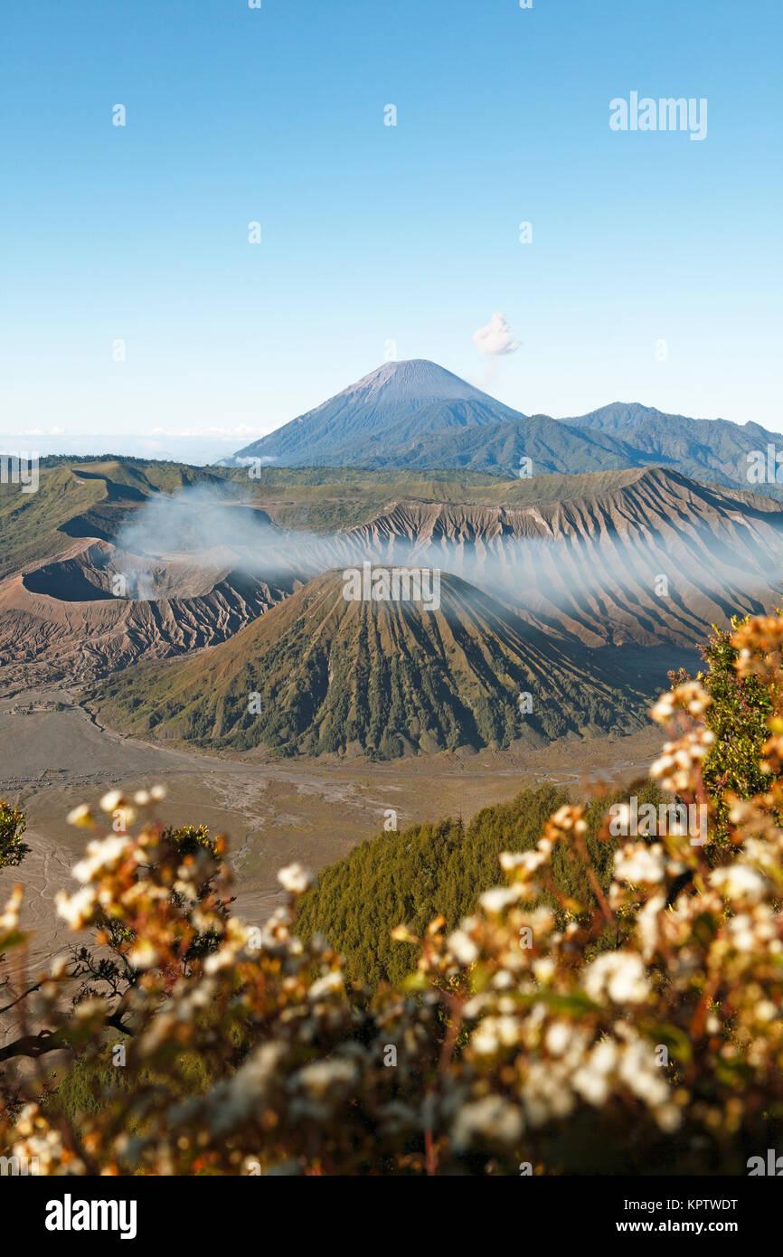 Bromo, Batok and Semeru volcanoes, Bromo-Tengger-Semeru National Park, Java - Stock Image
