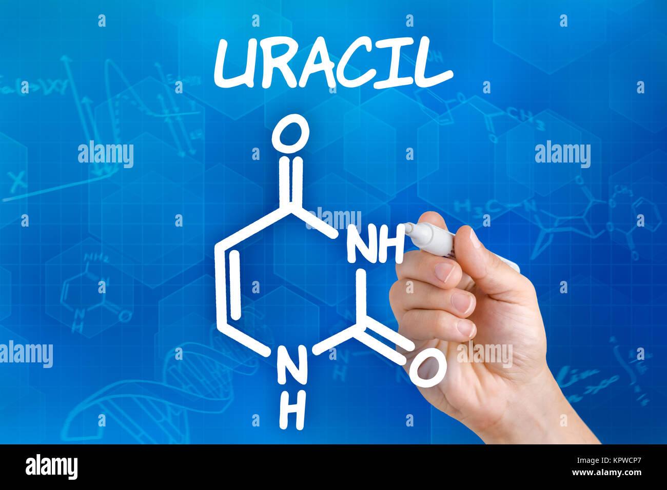 Scientist Drawing Molecular Chemical Formula Stock Photos