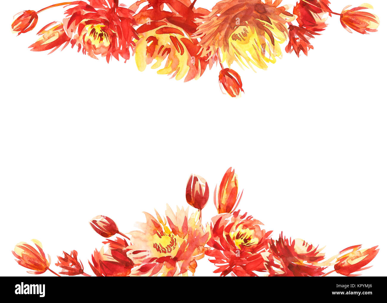 Colorful Watercolor Flower Border Painted Background Isolated On White