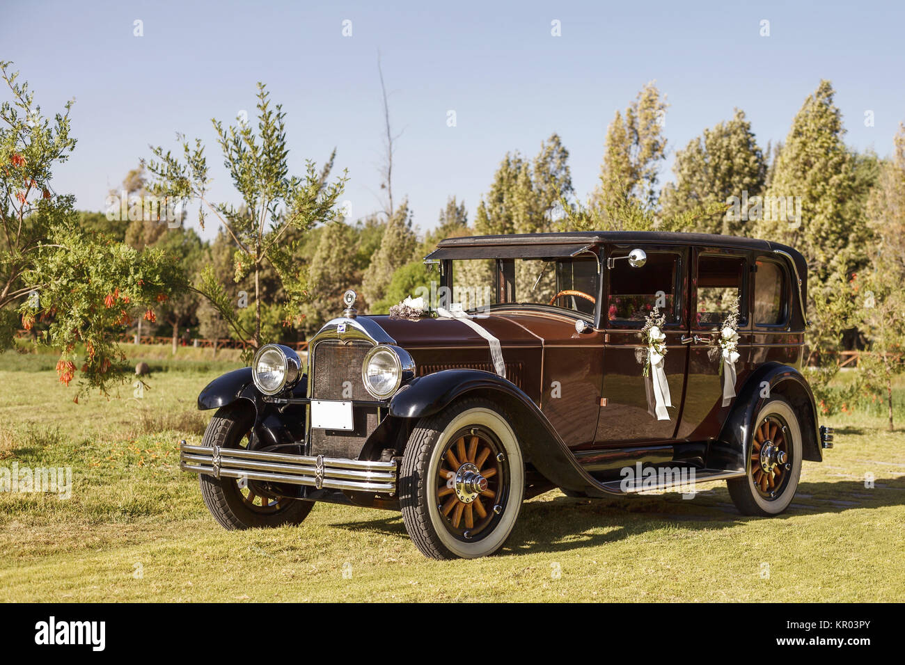 Vintage Wedding Car Decorated with Flowers Stock Photo: 169033395 ...