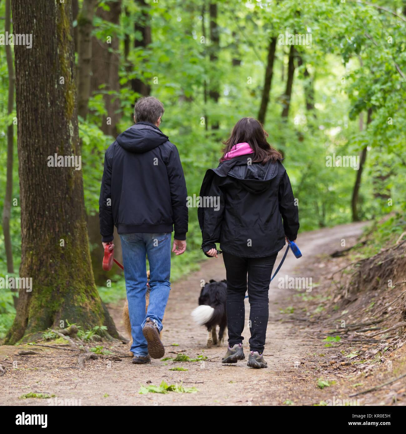 видео парочка пошла погулять в лес - 1