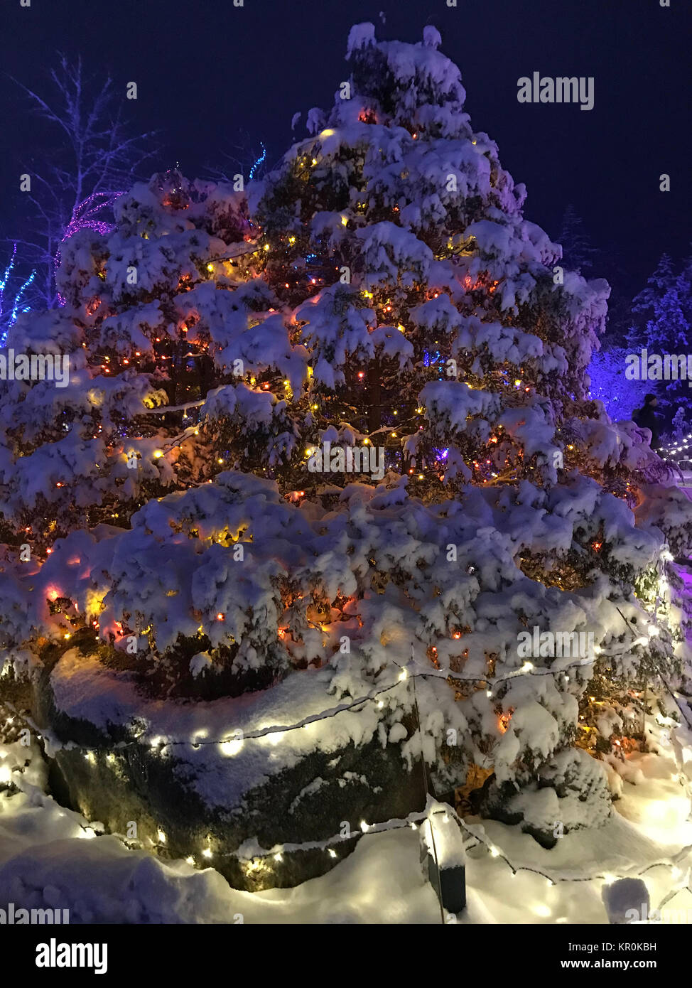christmas snow scene display in stock photos christmas snow scene