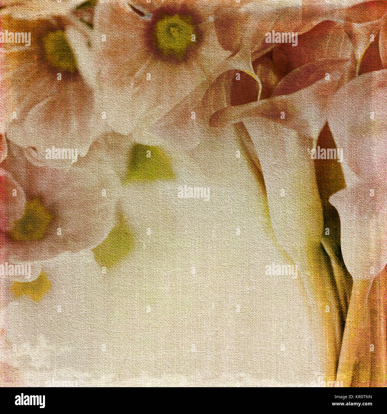 Old canvas background with floral print. - Stock Image