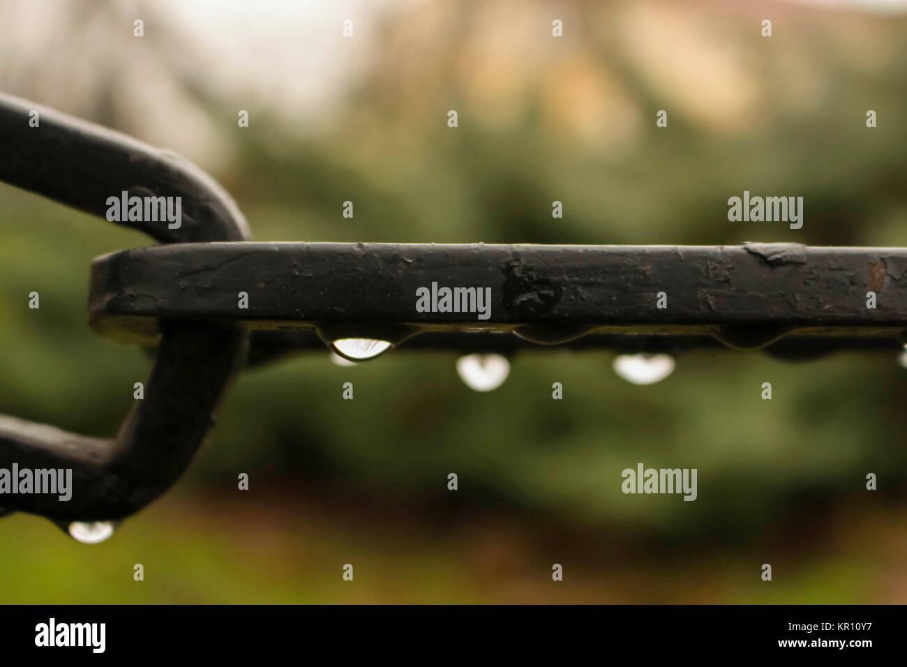 An iron black chain wet and blur - Stock Image