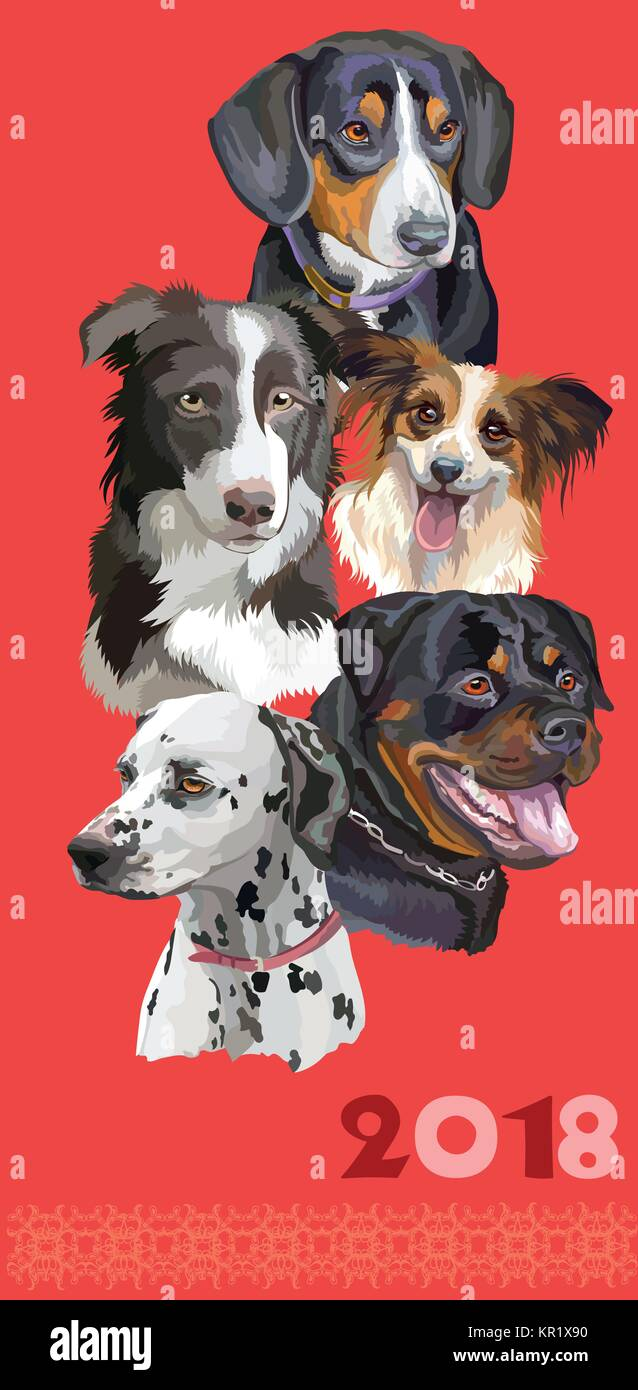 Vertical postcard with dogs of different breeds (Rottweiler; border collie; Dalmatian,papillon, Entlebucher Mountain - Stock Vector