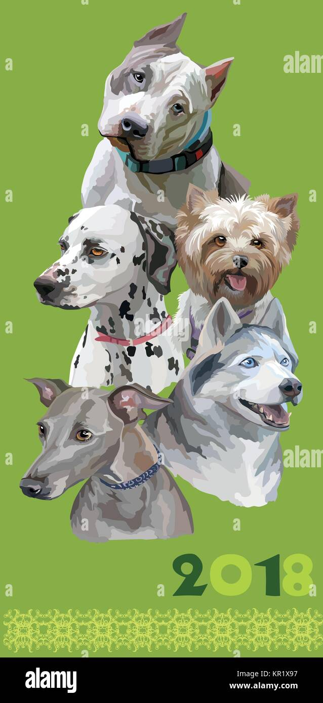 Vertical postcard with dogs of different breeds (American Staffordshire Terrier; Italian Greyhound; Dalmatian, siberian - Stock Vector