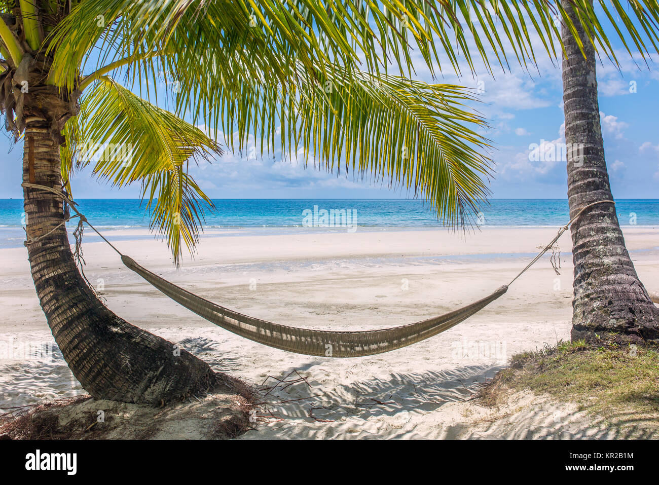 Empty hammock between palm trees on tropical beach in Thailand Stock Photo