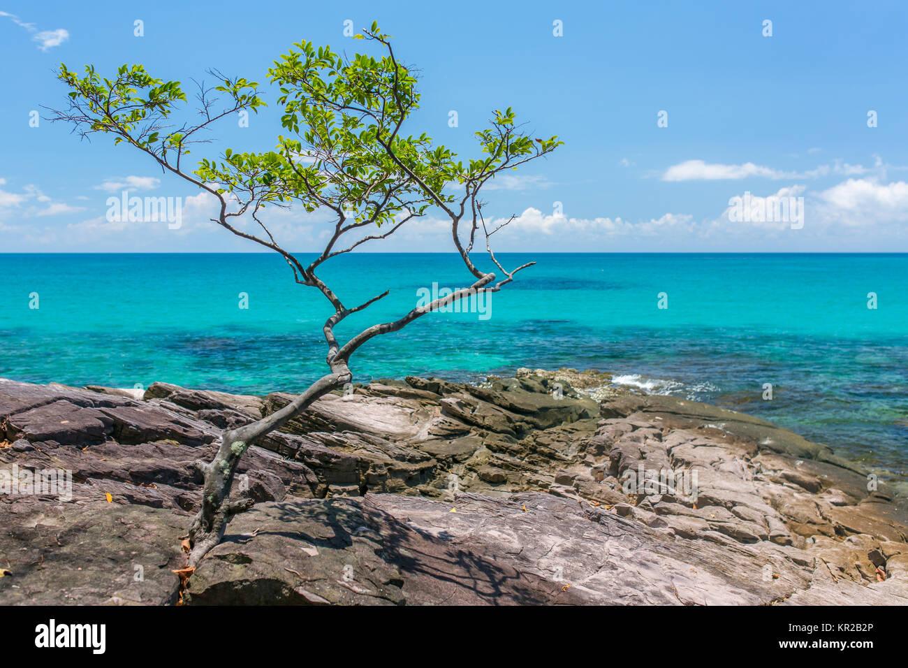 Beautiful rocky coast on Koh Kood island in Thailand - Stock Image