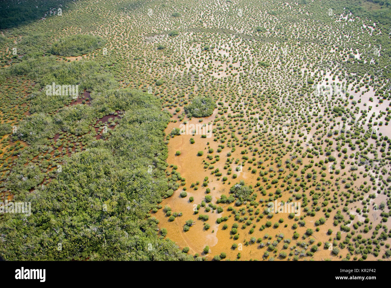 Aerial of Everglades National Park, Florida - Stock Image