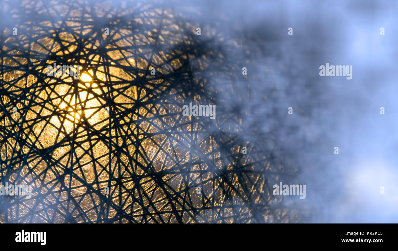 Detail of tangled network of black fibers with mystery glow in blue mist. Light caught in web. Concept for world - Stock Image