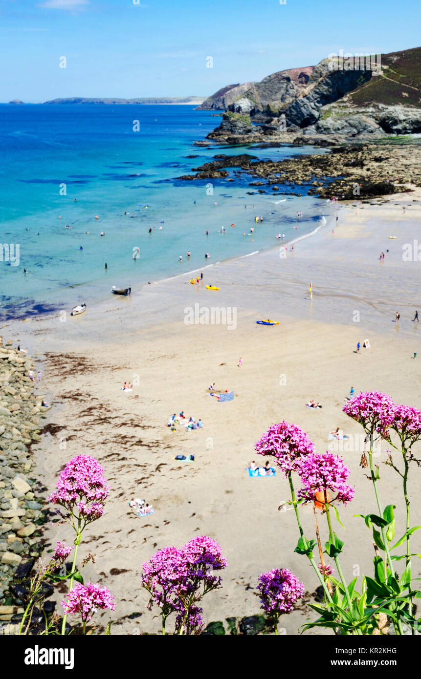 trevaunance cove in st.agnes, cornwall, england, britain, uk,. - Stock Image