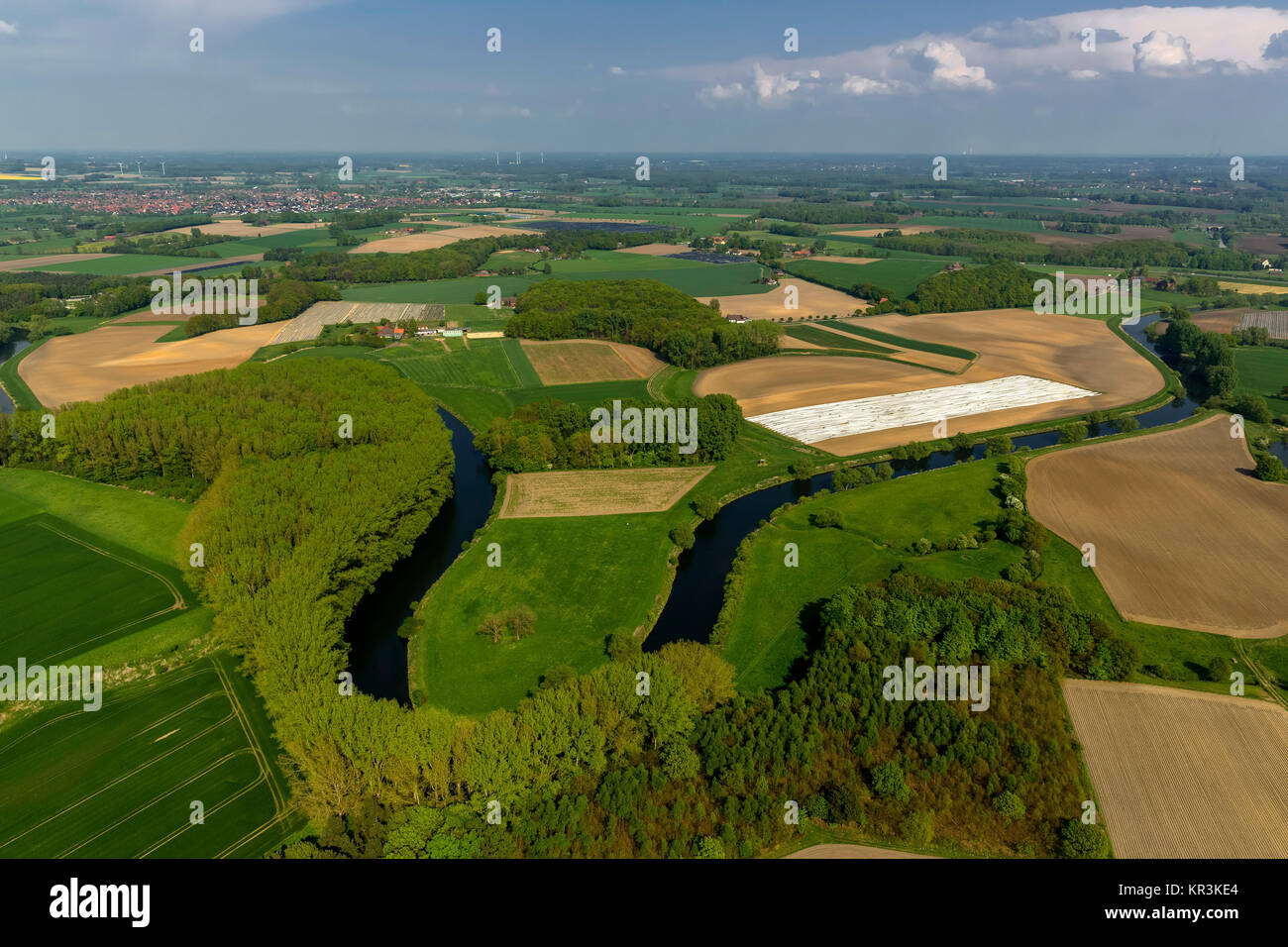 Olfen, Lippe, meander, Lippe meander, meandering river, nature reserve, Lippeauen, Lippe course, Münsterland, - Stock Image