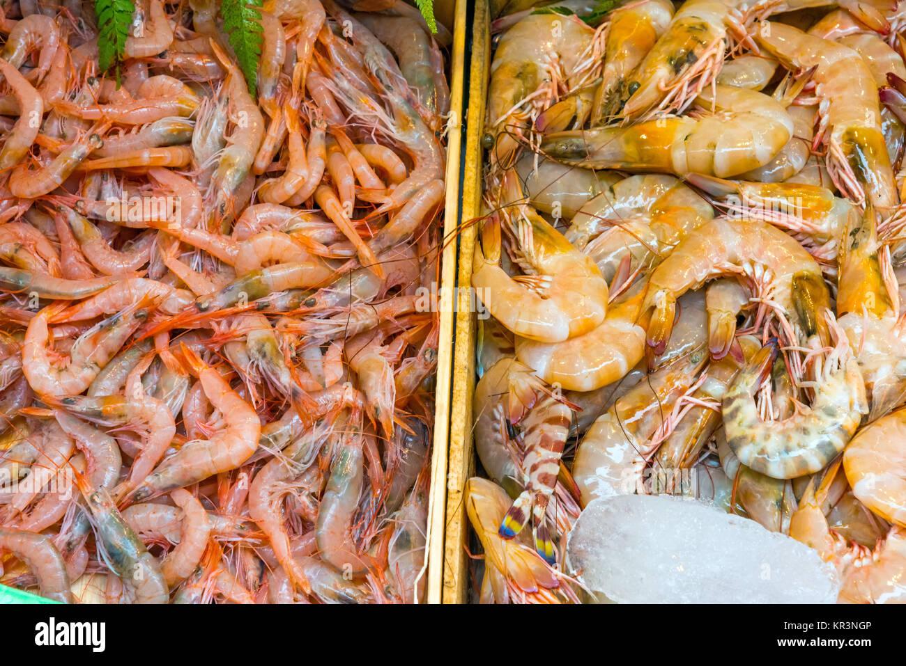 shrimp on the famous boqueria market in barcelona - Stock Image