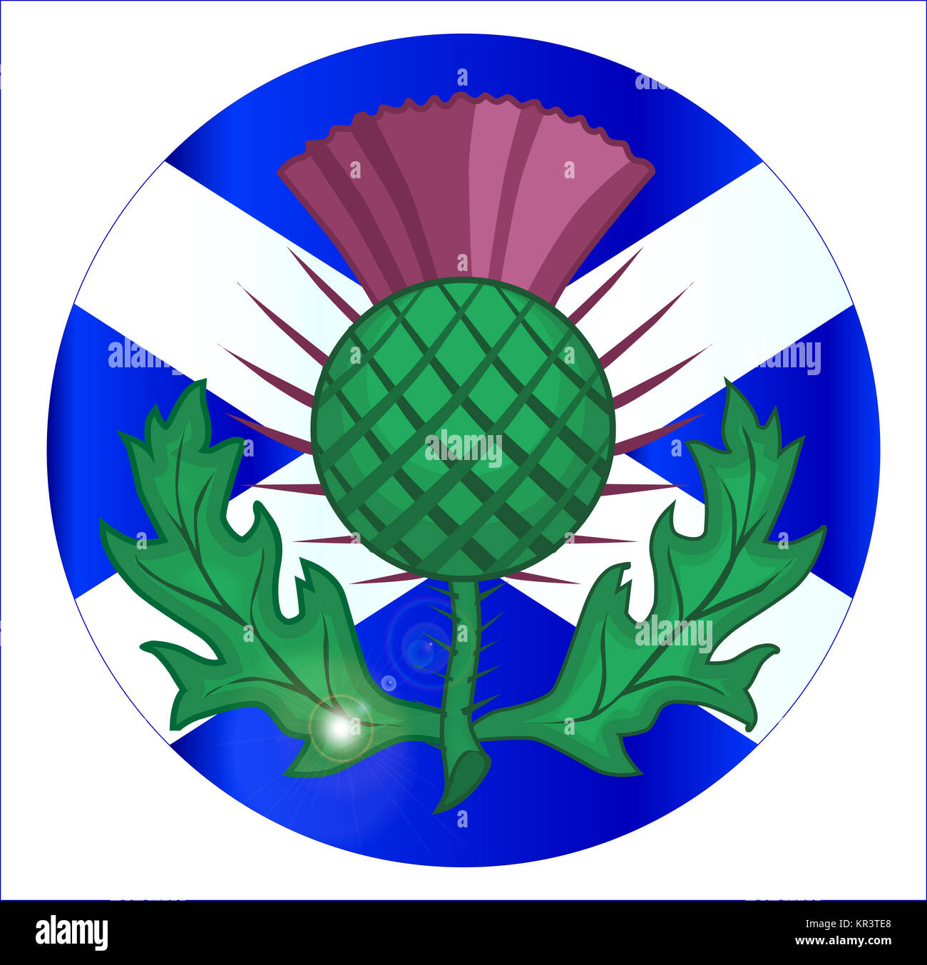 Scotish Flag And Thistle Button - Stock Image