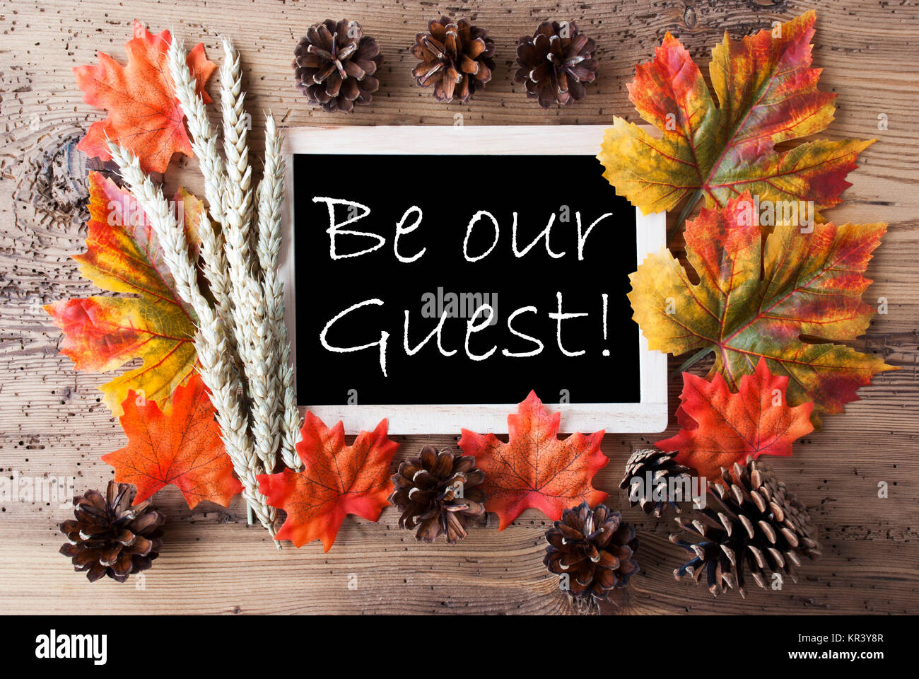 Blackboard With Autumn Or Fall Decoration Greeting Card For Seasons